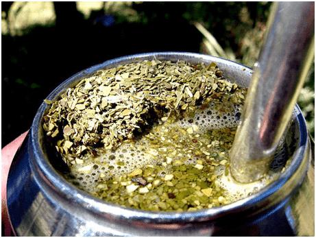 Как выглядит чай мате?