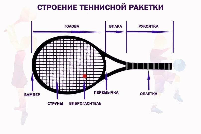 конструкция теннисной ракетки